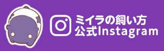 「ミイラの飼い方」公式Instagram