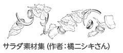 橘ニシキさんの「サラダ素材集」